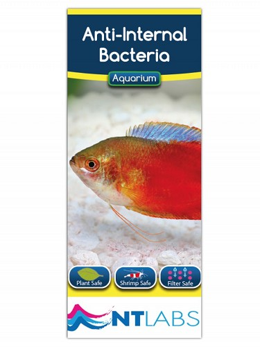 Anti inwendige bacterieen 1000 ml.