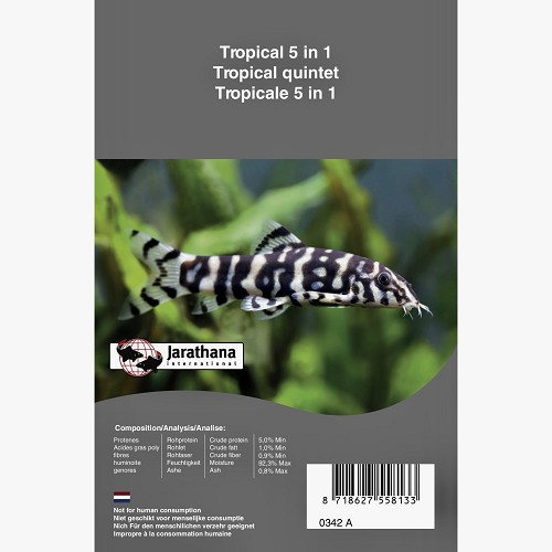 Tropical mix 5 in 1 blister dpvr #